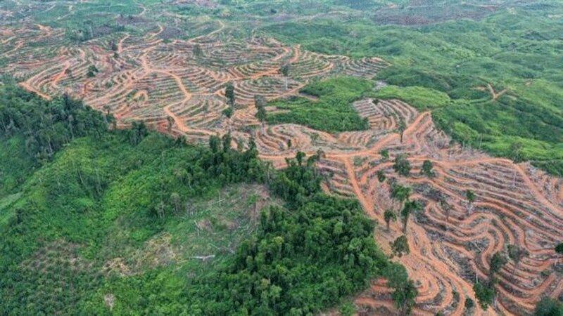 کارشناسان بین المللی: به سوء استفاده از زمین خاتمه دهید
