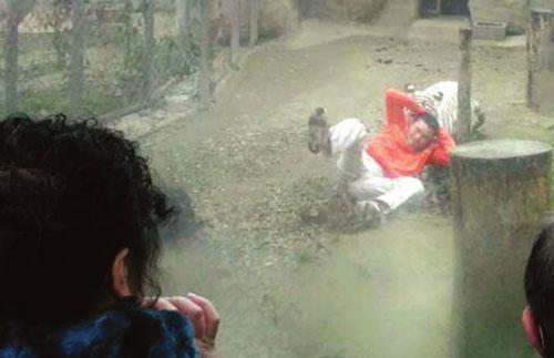 روایاتی از حوادث دلهره آور در باغ وحش ها که نفس را در سینه تان حبس می نماید!