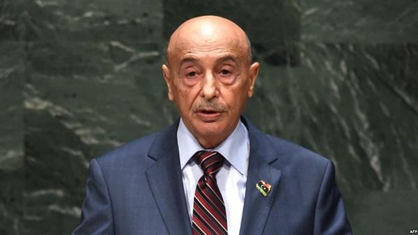 اعزام نظامیان ترکیه به لیبی غیر قابل قبول است