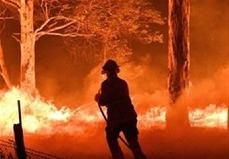 بارندگی از شدت آتش سوزی گسترده در استرالیا کاست، 24 انسان و 500 میلیون حیوان در آتش سوختند