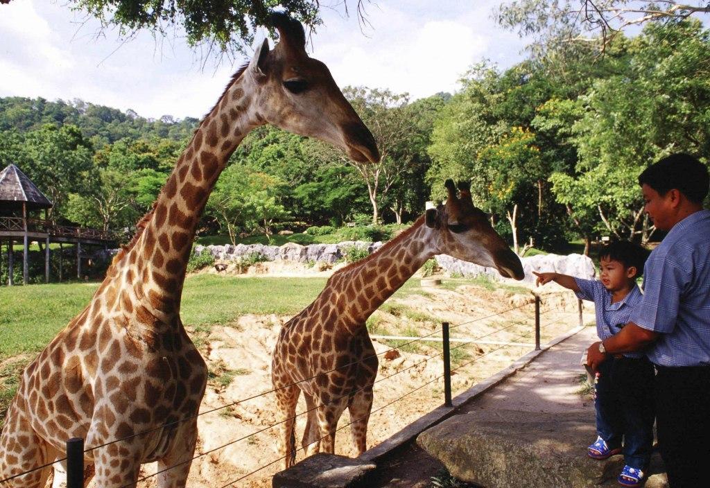 با بزرگ ترین باغ وحش های جهان آشنا شوید!