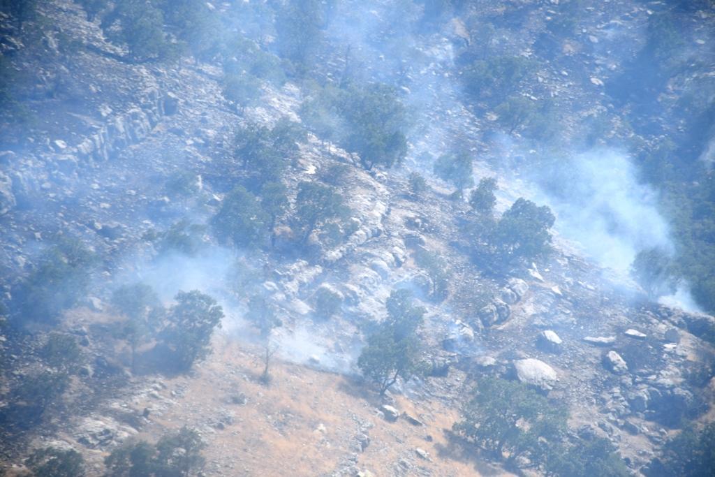 مهار 95 درصدی آتش سوزی منطقه حفاظت شده شیمبار در خوزستان