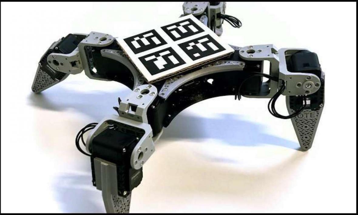 ارزان ترین ربات را به همراه قابلیت تقویت یادگیری وارد بازار جهانی می گردد