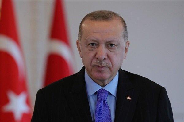 رئیس جمهور ترکیه و امیر قطر با یکدیگر رایزنی کردند