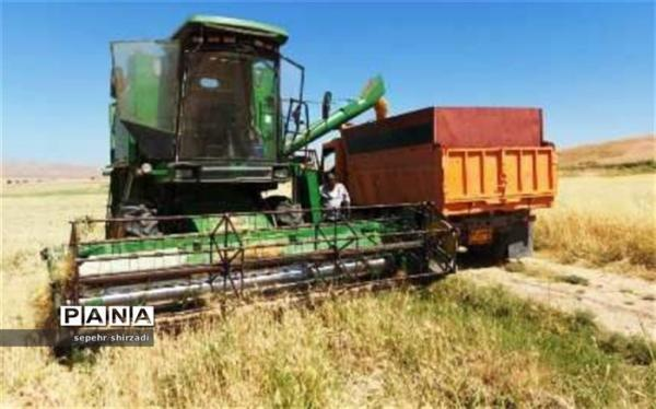 دولت چه میزان از گندم کشاورزان را خریداری نموده است؟