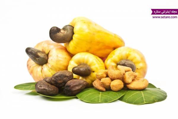 خواص بادام هندی چیست؟ (آشنایی با مضرات و خواص گیاه بادام هندی)