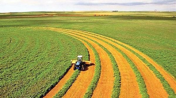 اجرای 39 طرح در حوزه صنعت، معدن، کشاورزی ثلاث باباجانی